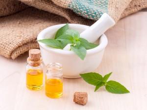 belleza y cosmetica natural plantas ayurvedicas belleza natural cosmetica ecologica
